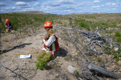 Evaluating Surface Mining Reclamation Success